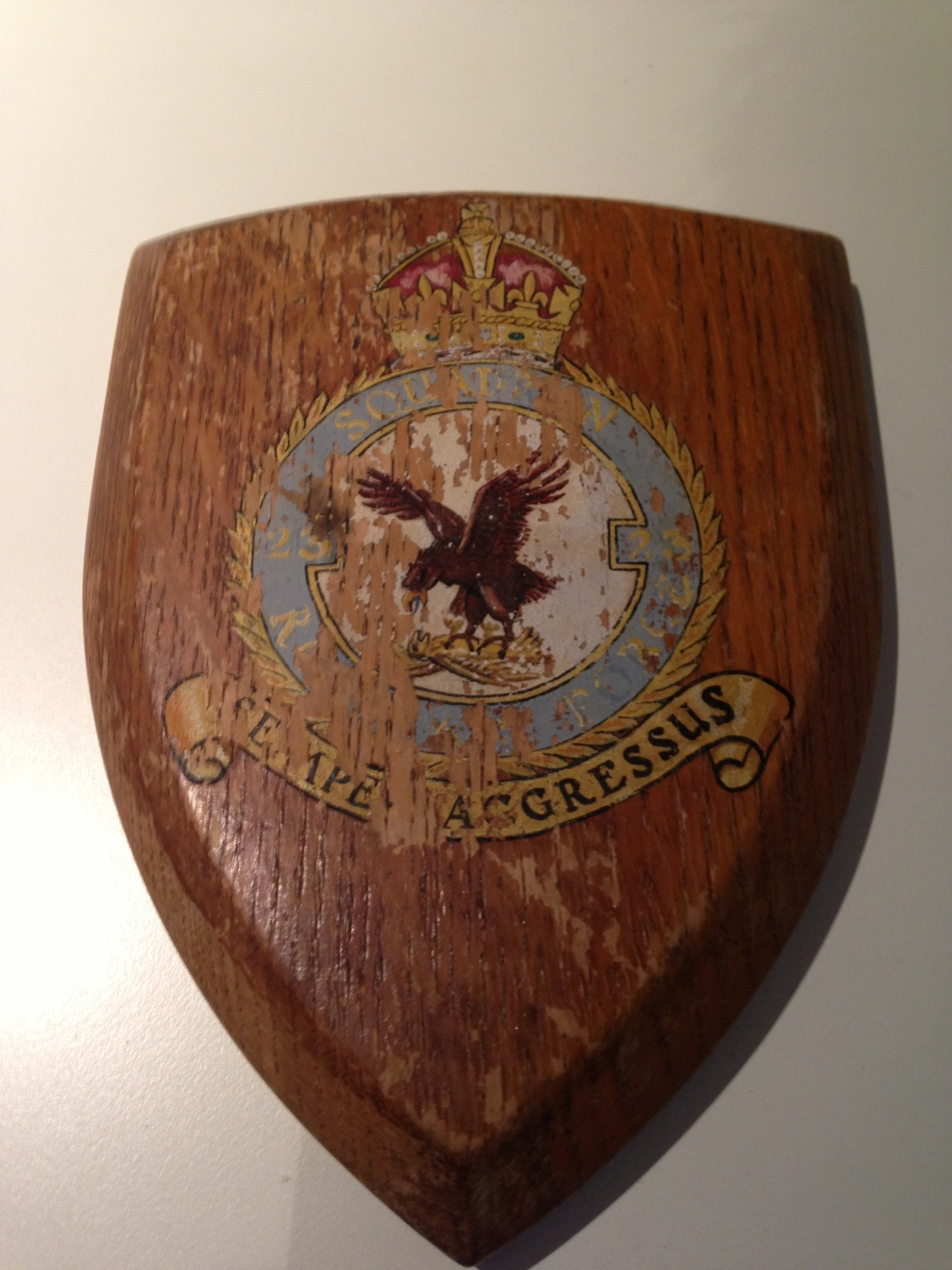 photo 23 Squadron Crest